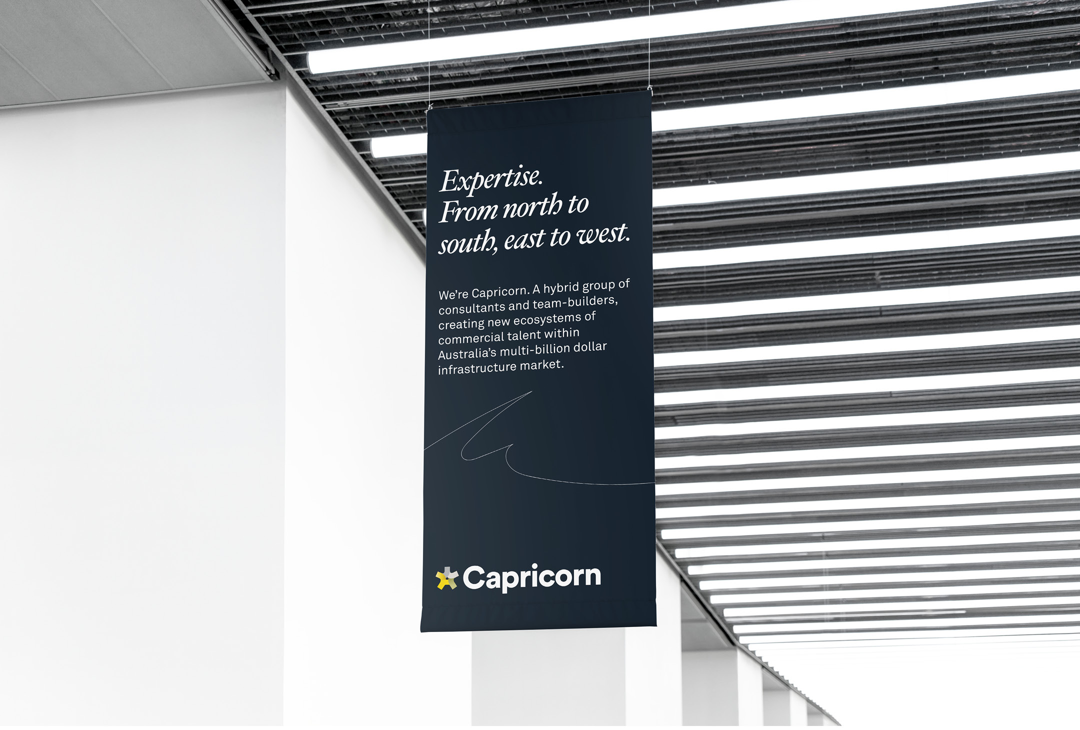 Branded banner for Capricorn Infrastructure